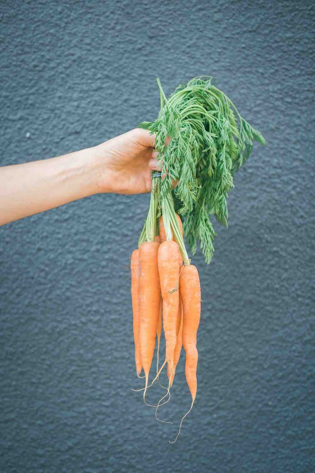 Comment cuire des carotte