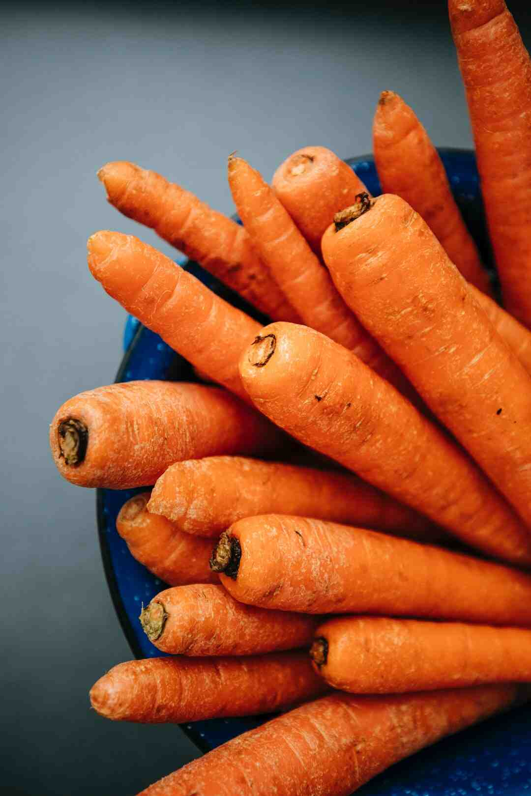 Pourquoi les carottes ne germent pas ?