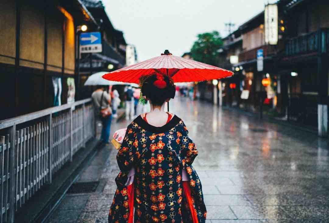 érable du japon persistant