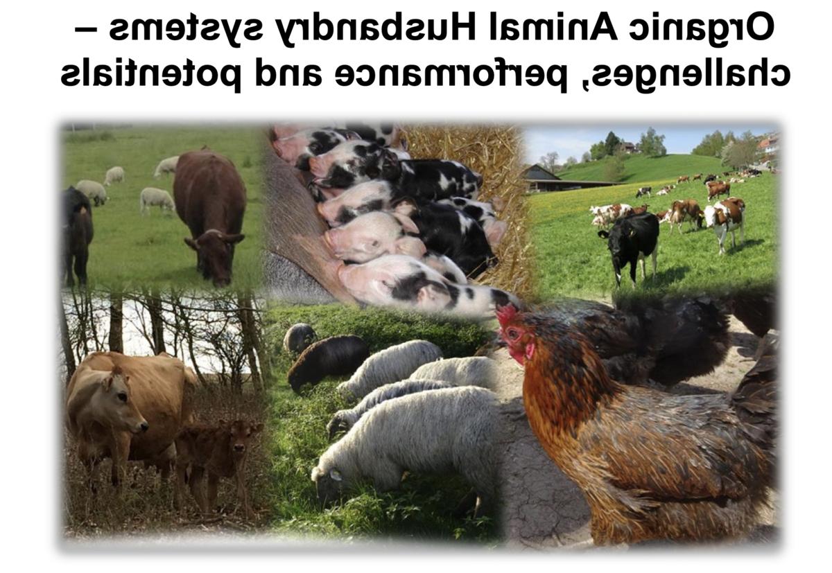 Quand a été inventé l'agriculture et l'élevage ?
