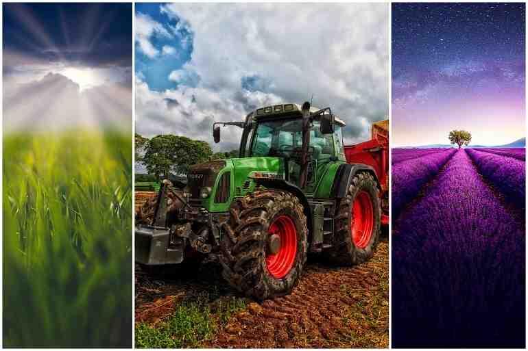 Quelle activité agricole pour construire ?