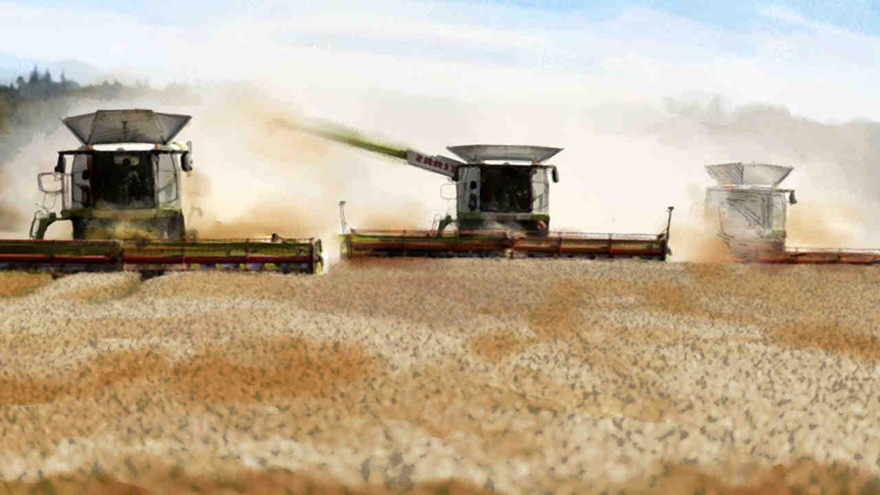 Quels sont les impacts de l'agriculture moderne sur les sols ?
